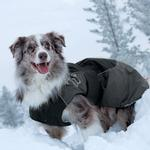 View Image 2 of Hurtta Dog Winter Jacket - Blue