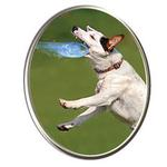 View Image 3 of Hydro Saucer Dog Toy