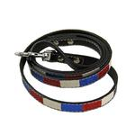 View Image 1 of Ice Cream Dog Leash - Patriotic Bone