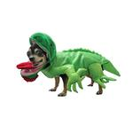 View Image 1 of Iguana Dog Halloween Costume