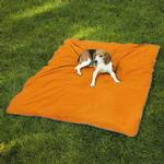 Insect Shield Pet Blanket - Carrot
