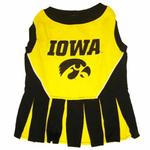 View Image 1 of Iowa Hawkeyes Cheerleader Dog Dress
