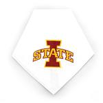 View Image 1 of Iowa State Cyclones Dog Bandana