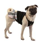 View Image 3 of Junior Dog Dress by Puppia - Black