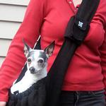 View Image 4 of Just Hangin' Messenger Style Sling Pet Carrier - Black