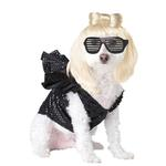 View Image 1 of Pop Sensation Dog Costume