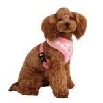 View Image 1 of Love Letter Dog Harness by Puppia - Ivory