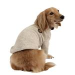 View Image 3 of Maddox Dog Sweater by Puppia - Beige