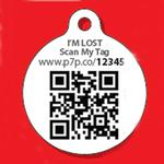 View Image 2 of Mickey Mouse QR Code Pet ID Tag