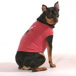 View Image 2 of Min Pins Are In dog shirt - Red