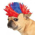 View Image 1 of Mohawk Dog Wig - Blue and Red