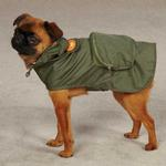 View Image 3 of Monkey Business Stowaway Dog Rain Jacket - Ty