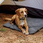 View Image 1 of Mt. Bachelor Pad Dog Bed by RuffWear - Overcast Blue