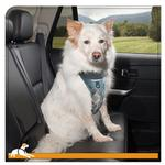 View Image 4 of Muted Floral Car Dog Harness by Kurgo