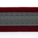 View Image 3 of Precision Dog Leash - Red