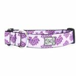 View Image 1 of Nirvana Wide Clip Adjustable Dog Collar