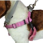 View Image 1 of No-Pull Dog Harness Deluxe Training Package - Rose and Silver
