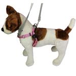 View Image 2 of No-Pull Dog Harness Deluxe Training Package - Rose and Silver