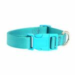 View Image 2 of Nylon Dog Collar by Zack & Zoey - Bluebird