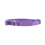 View Image 1 of Nylon Dog Collar by Zack & Zoey - Ultra Violet