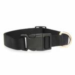 View Image 2 of Nylon Dog Collar by Zack & Zoey - Jet Black