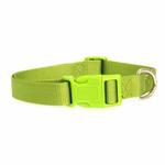View Image 2 of Nylon Dog Collar by Zack & Zoey - Parrot Green