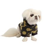 View Image 3 of Odette Dog Hoodie by Pinkaholic - Dark Gray