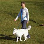 View Image 3 of Patento Pet Anti Bite Dog Leash - Blue