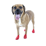 PawZ Disposable Dog Booties 12pk - Small Red