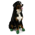 View Image 1 of PawZ Disposable Dog Booties 12pk - X-Large Green