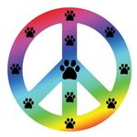 View Image 1 of Peace Sign Magnet - Rainbow