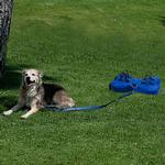 View Image 1 of Pet n' Place - Blue Bone