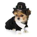 View Image 1 of Pilgrim Boy Dog Costume