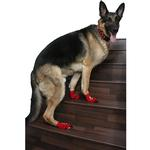 View Image 2 of Pirate Pooch PAWks Dog Socks
