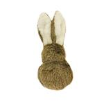 Pogo Plush Dog Toy - Bunny