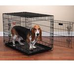 View Image 1 of ProSelect Everlasting Dual-Door Folding Dog Crate - Black