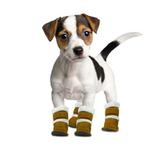 View Image 1 of Pugz Dog Boots
