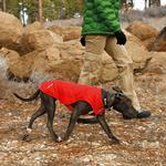 View Image 4 of Quinzee Insulated Dog Jacket by RuffWear - Red Rock