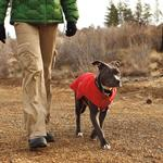 View Image 2 of Quinzee Insulated Dog Jacket by RuffWear - Red Rock