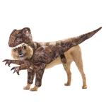 View Image 1 of Raptor Dog Costume