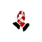 View Image 1 of Snowflake Dog Scarf by Hip Doggie - Red & White