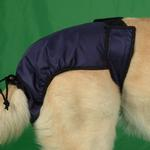 View Image 3 of SnuggEase Washable Protective Dog Pants