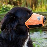 View Image 1 of Soft Fit Dog Muzzle by Canine Friendly - Orange