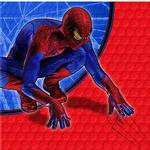 Spider-Man Party Supplies - Beverage Napkins