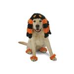 View Image 1 of Spooky Spider Halloween Dog Costume