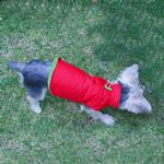 View Image 1 of Sports Dog Vest by Gooby - Red/Lime Green
