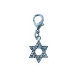 View Image 1 of Star of David Collar Charm