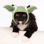 Star Wars Yoda Hood Cat Costume