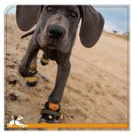 View Image 3 of Step N Strobe Dog Shoes by Kurgo
