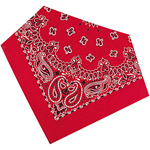 View Image 1 of Super Fun Dog Bandanas